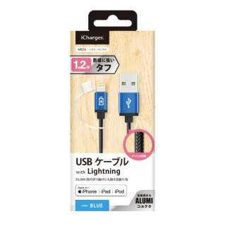USB-A ⇔ Lightning 充電・転送ケーブル iCharger タフ [1.2m /MFi認証 iPhone・iPad・iPod] PG-LC12M25BL ブルー [1.2m]