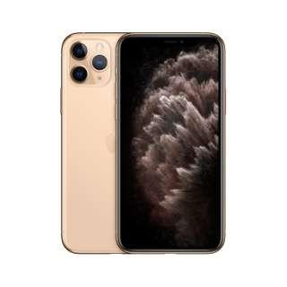 【ドコモ】Apple iPhone 11 Pro A13 Bionic 5.8型 ストレージ: 256GB デュアルSIM(nano-SIMとeSIM) APL48787 ゴールド