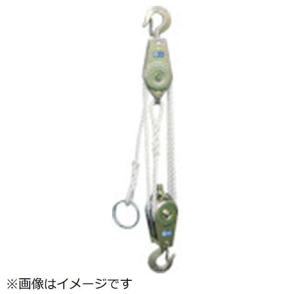 HHH ロープホイスト 250kg 揚程3m RH250