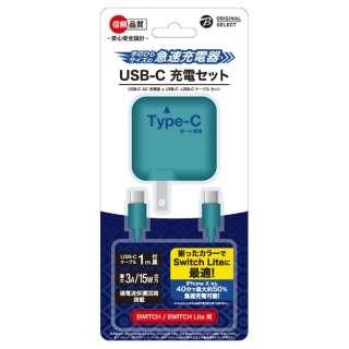 SwitchLite用 USB-C 充電器セット ターコイズ BKS-NSL009 【Switch Lite】