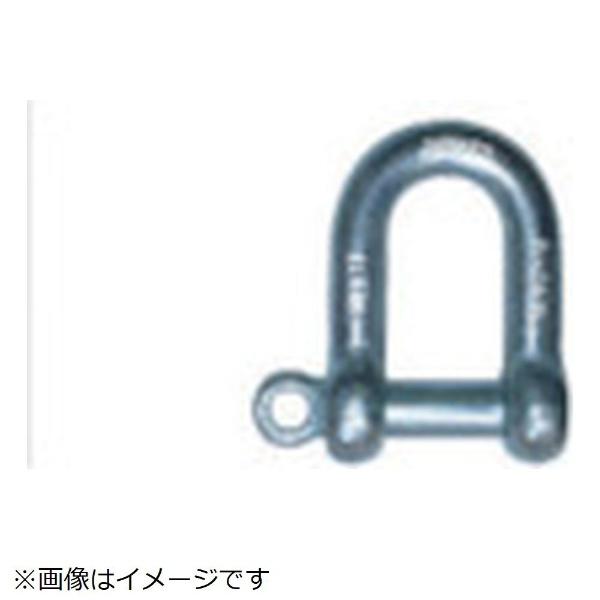 大洋製器工業 大洋 捻込シャックル黒22MM NGS22