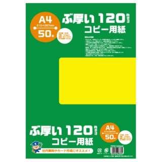 PPC120A4 コピー用紙 ぶ厚いコピー用紙 120gsm [A4 /50枚]