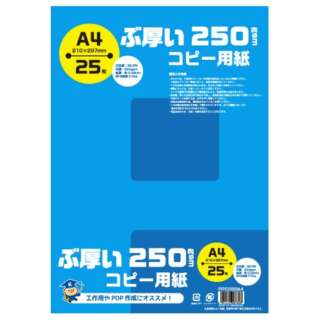 PPC250A4 コピー用紙 ぶ厚いコピー用紙 250gsm [A4 /25枚]