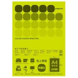 CPC19 〔各種プリンタ〕カラーペーパースペクトラ 75g/m2 [A4 /20枚] 蛍光グリーン