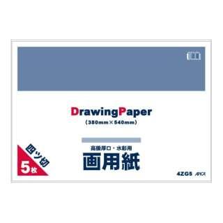 四ツ切画用紙5枚 4ZG5