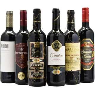 スペイン金賞受賞ワインセット 750ml 6本【赤ワイン】