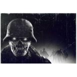 Zombie Army Trilogy 【Switch】