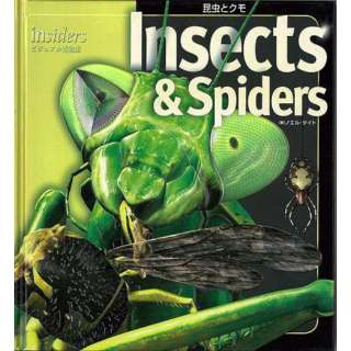 【バーゲンブック】Insects&Spiders-昆虫とクモ insidersビジュアル博物館