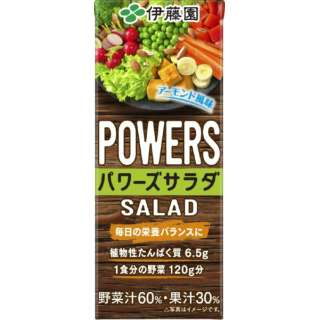 パワーズサラダ(POWERS SALAD) 紙パック 200ml 24本【野菜ジュース】