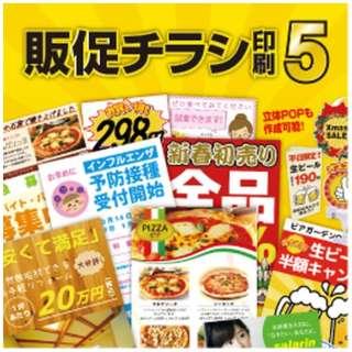 販促チラシ印刷5 [Windows用] 【ダウンロード版】