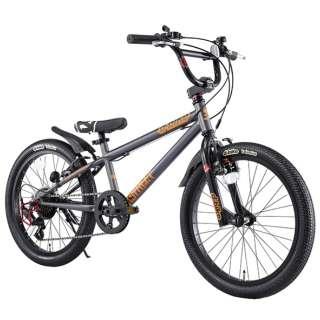 20型 子供用自転車 D-Bike Xstreet 20S(ダークメタ/外装6段変速) 【適応身長:111~138cm/6歳前後向け】 【組立商品につき返品不可】