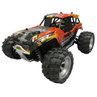 RC 16sc Mad Style Series Lizzard