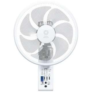 FWS30KRW リモコン式壁掛け扇風機