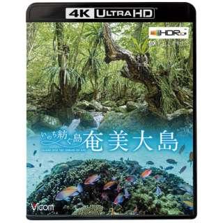 奄美大島 ~いのち紡ぐ島~ 4K ULTRA HD 【DVD】