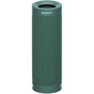 ブルートゥーススピーカー SRS-XB23 GC グリーン [Bluetooth対応 /防水]