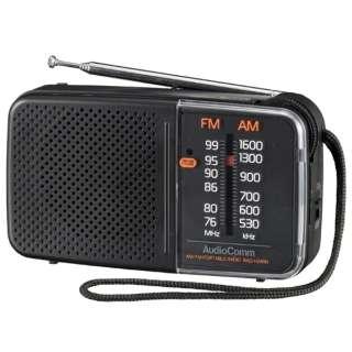 スタミナハンディラジオ RAD-H245N [AM/FM /ワイドFM対応]