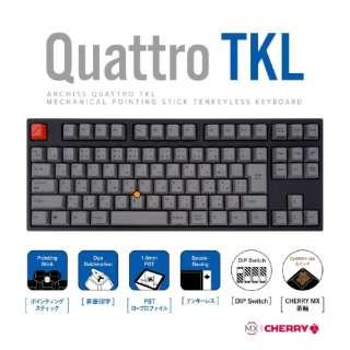 AS-KBQ91/TGBA キーボード CHERRY MX 茶軸 [USB /有線]