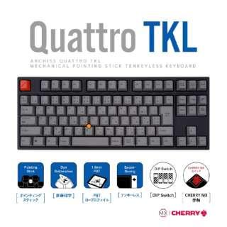 AS-KBQ91/LRGBA キーボード CHERRY MX 赤軸 [USB /有線]
