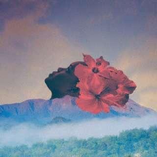 Zara McFarlane/ Songs Of An Unknown Tongue 【CD】