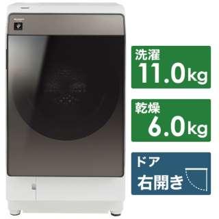 ドラム式洗濯乾燥機 ブラウン系 ES-WS13-TR [洗濯11.0kg /乾燥6.0kg /ヒートポンプ乾燥 /右開き]