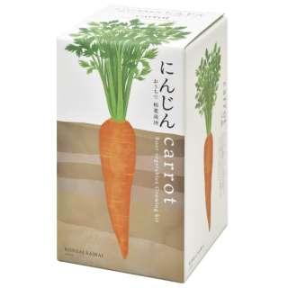 GD-89102 根菜栽培セット にんじん
