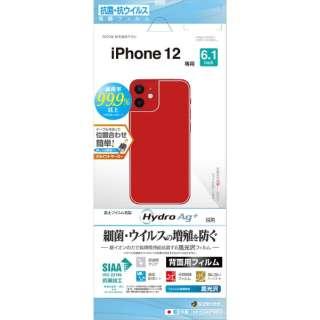 iPhone 12/12 Pro 6.1インチ対応 フィルム 背面専用 抗菌光沢 HP2564IP061