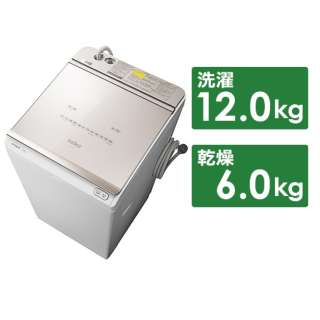 タテ型洗濯乾燥機 BW-DKX120F-N