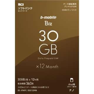 """毫微SIM软银线路""""b-mobile Biz SIM组件""""(供SB/iPad使用的毫微)BS-IPAPC-30G12MN"""