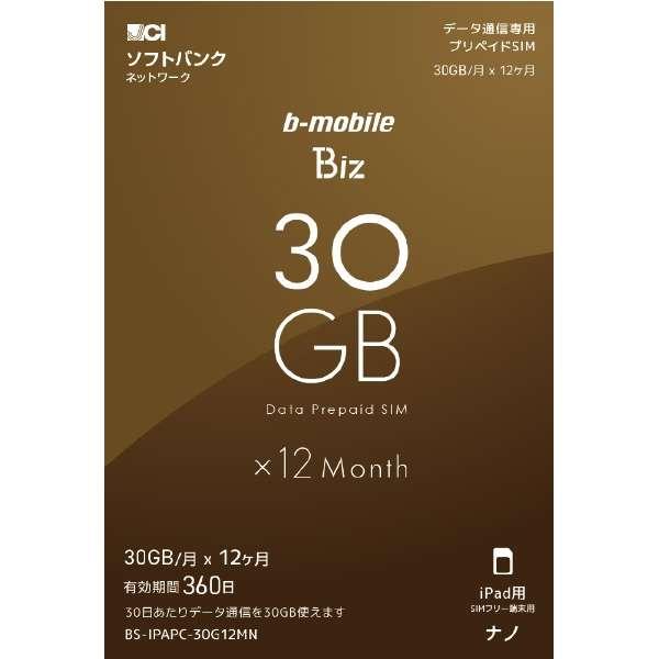 ナノSIM ソフトバンク回線「b-mobile Biz SIMパッケージ (SB/iPad用ナノ)」 BS-IPAPC-30G12MN
