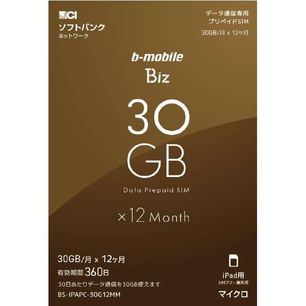 マイクロSIM ソフトバンク回線「b-mobile Biz SIMパッケージ (SB/iPad用マイクロ)」 BS-IPAPC-30G12MM
