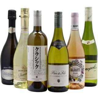 [2002年全日本最優秀ソムリエ] 『阿部 誠』 おすすめさっぱり系ワイン 750ml 6本【ワインセット】