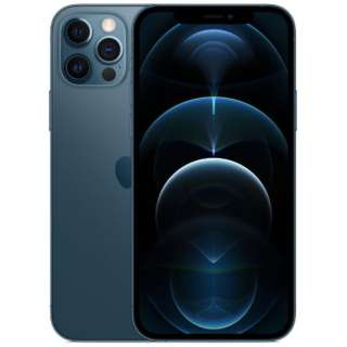 Apple iPhone 12 Pro/iPhone 12 Pro Max