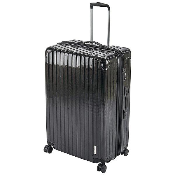 パルティール スーツケースTSAロック付きWFタイプL(ブラック) UV-0064