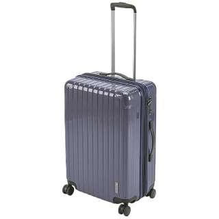 パルティール スーツケースTSAロック付きWFタイプM(バイオレッド) UV-0083