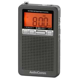 DSPポケットラジオ AudioComm メタリックグレー RAD-P360N-H [AM/FM /ワイドFM対応]