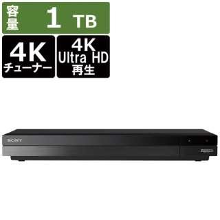 ブルーレイレコーダー BDZ-FBW1100 [1TB /2番組同時録画 /BS・CS 4Kチューナー内蔵]