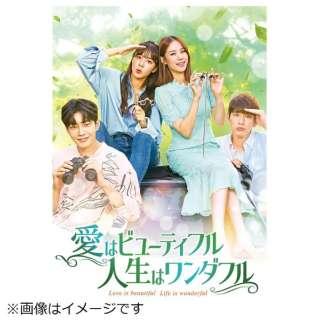 愛はビューティフル、人生はワンダフル DVD-BOX4 【DVD】