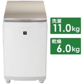 縦型洗濯乾燥機 ゴールド系 ES-PW11F-N [洗濯11.0kg /乾燥6.0kg /ヒーター乾燥(排気タイプ) /上開き]