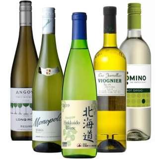 『阿部 誠』おすすめ! 夏に最適な国&品種飲み比べ白セット 750ml 4本、720ml 1本【ワインセット】